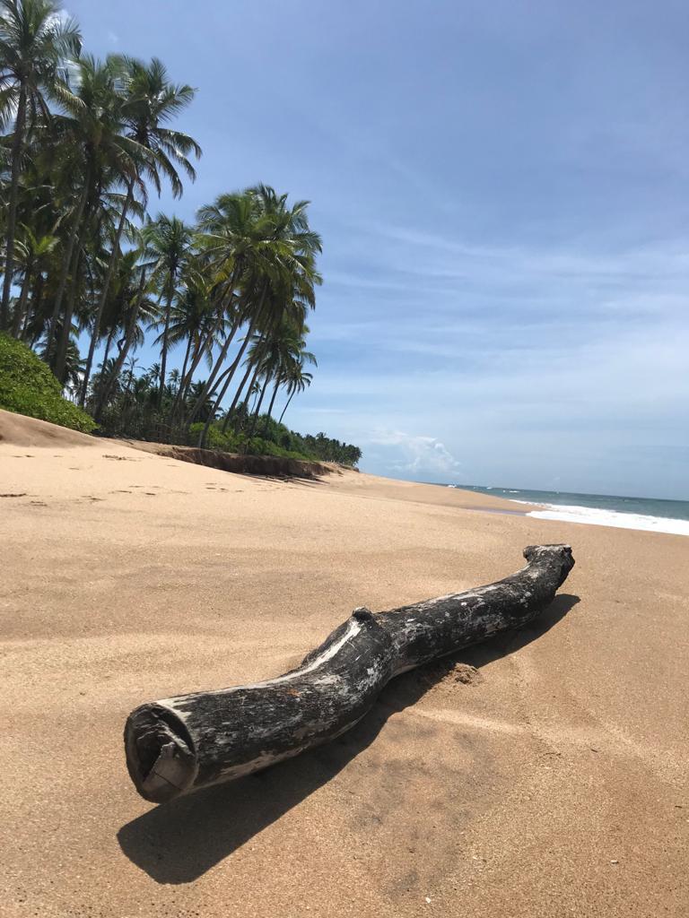 Ayurvédsky pobyt na Sri Lanke s hormonálnou jogou AUGUST